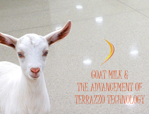 Goat Milk & The Advancements in Terrazzo Technology