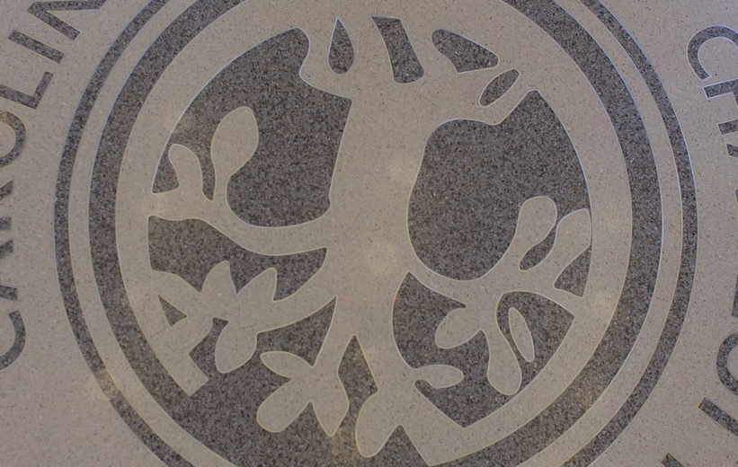 Detailed CPCC tree logo cut with a waterjet for this terrazzo floor design