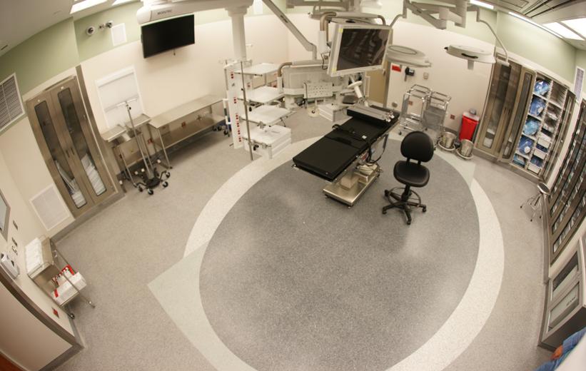 Carolinas Medical Center Terrazzo Floor