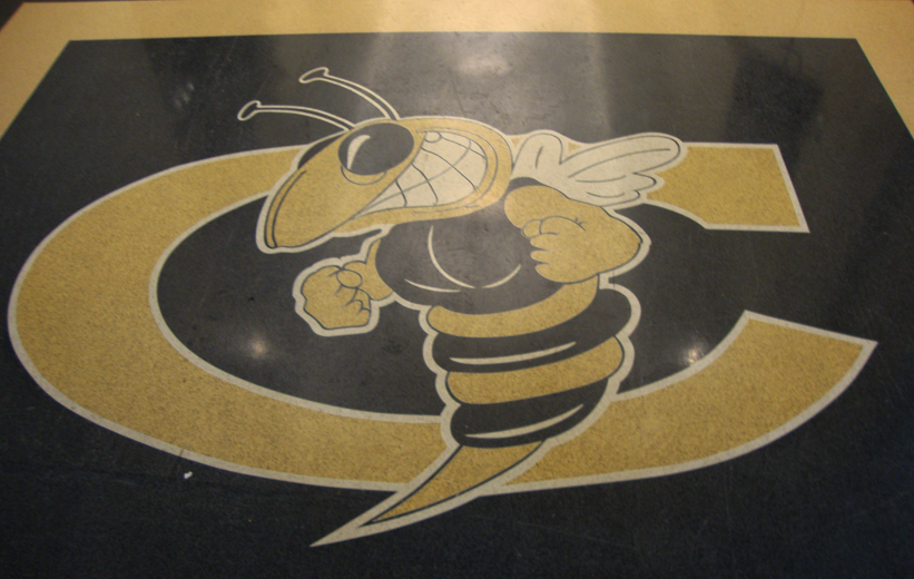 Yellowjacket logo design in black and white epoxy terrazzo