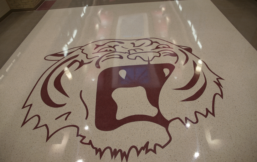 Tiger Terrazzo Logo at Fair Street School