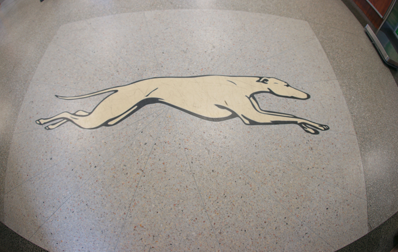 Greyhound bus terrazzo logo at J. Douglas Galyon Depot