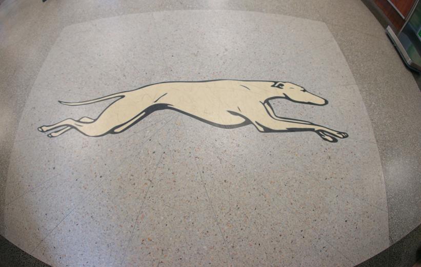 Greyhound bus terrazzo logo at J. Douglas Galyon Depot