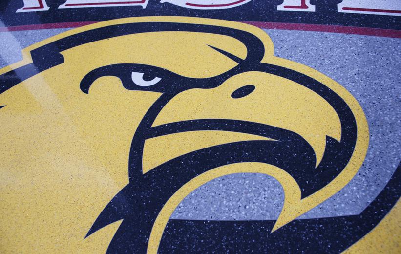 Terrazzo Detailed Eagle Logo