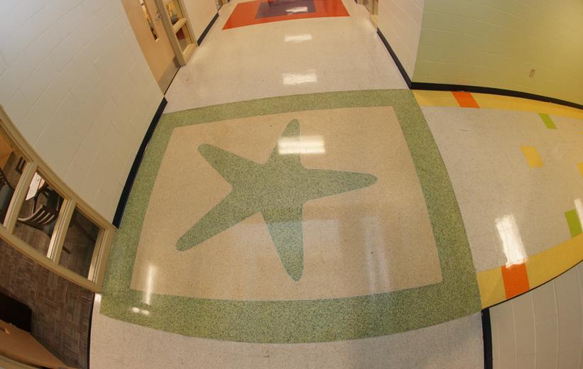 starfish design in green epoxy terrazzo at Oakland Elementary School