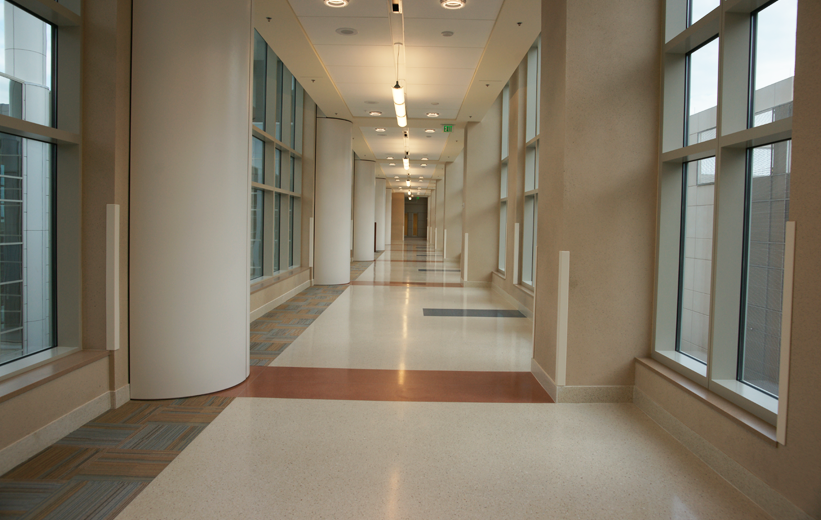 Carpet and terrazzo installed at Orlando Veterans Affair Medical Center; Healthy Terrazzo Flooring