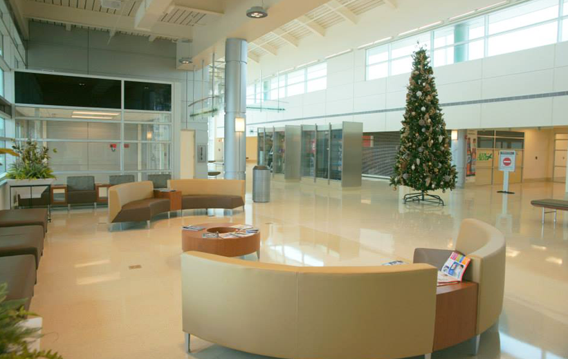 Christmas tree standing on top seamless epoxy terrazzo floors