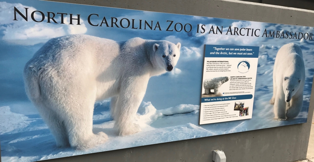 North Carolina Zoo - Arctic Ambassador