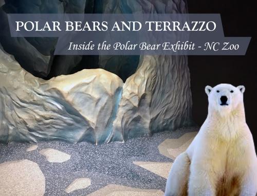 Polar Bears and Terrazzo – Oh My!